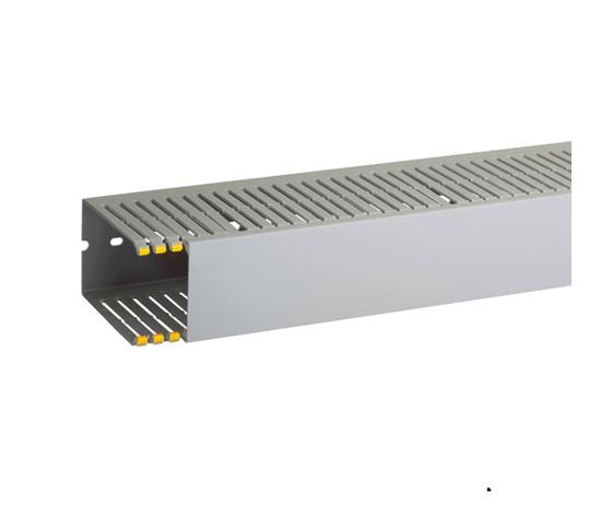 Immagine di Canalette per cablaggio di quadri elettrici T1-EN 60X100