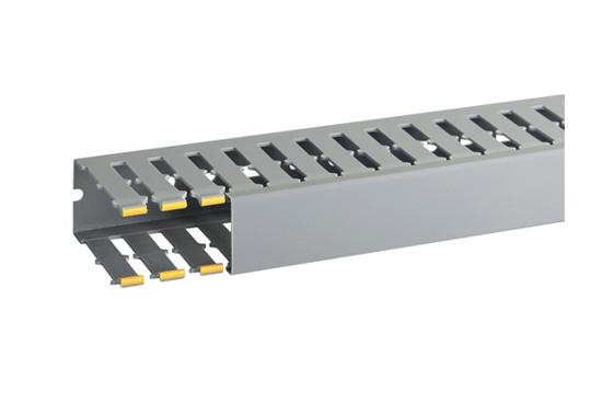 Immagine di Canalette per cablaggio di quadri elettrici T1-N 40X80