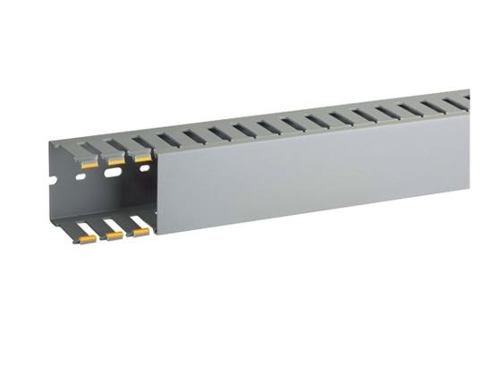 Immagine di Canalette per cablaggio di quadri elettrici T1-N 60X60